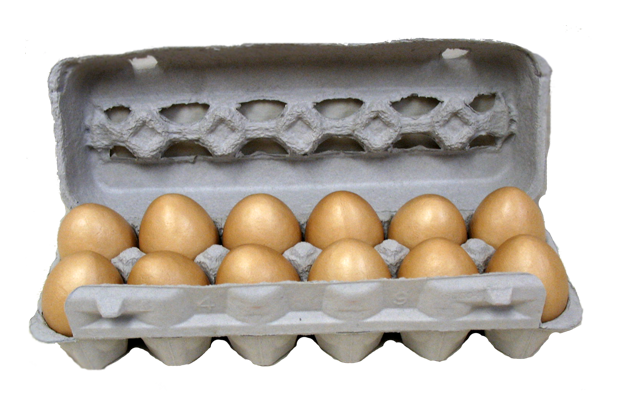 egg-laying-to-packaging-cardboard-egg-carton