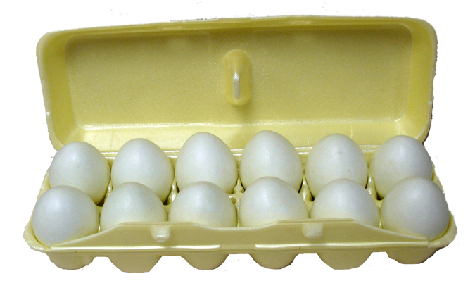 egg-laying-to-packaging-styrofoam-egg-carton